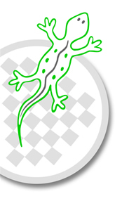 Logo Lezard gourmand